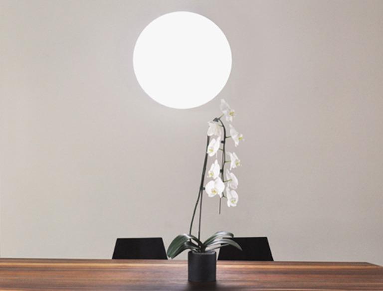 sunn-light